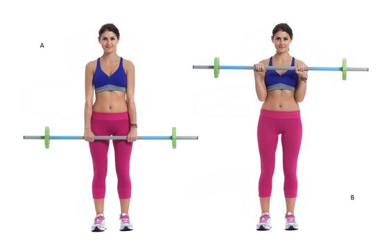 Standing curl with a barbell