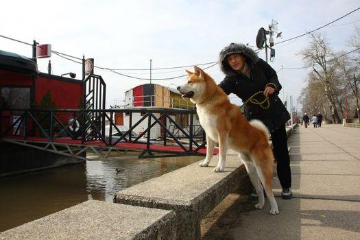 Lady with Akita Inu enjoying on the riverside