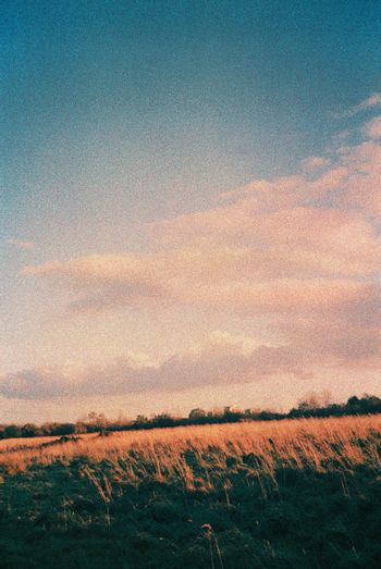 Color film image of nature scene in Maidencraig, Aberdeen