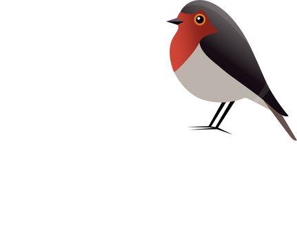 Robin Bird Vector Clipart