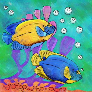 Colorful Aquarium Fishes