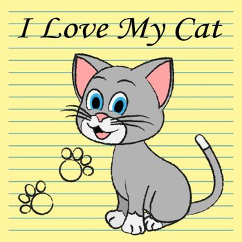 Love My Cat Meaning Affection Passion And Being Loved