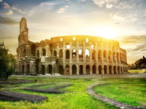 Bird over Colosseum