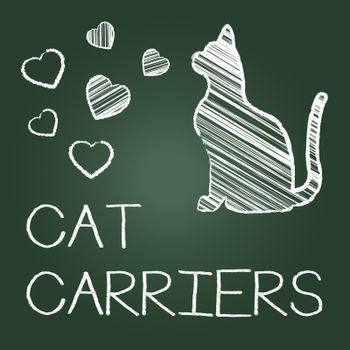 Cat Carriers Showing Box Pets And Container