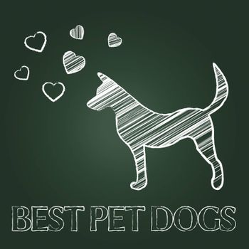 Best Pet Dogs Representing Domestic Animals And Finest