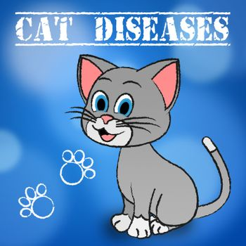 Cat Diseases Showing Kitty Puss And Disorder