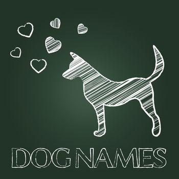 Dog Names Indicating Pedigree Identity And Pets