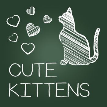Cute Kittens Showing Domestic Cat And Lovely
