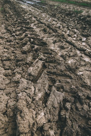 Agricultural tractor tyre track in dry dirt