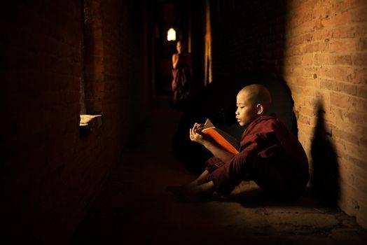 Buddhist novice reading