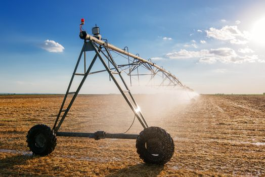 Agricultural irrigation on harvested wheat stubble field