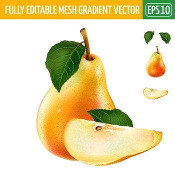 Pear on white background. Vector illustration