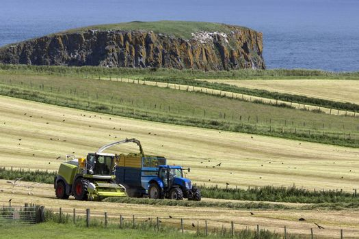 Agriculture - Ballycastle - Northern Ireland