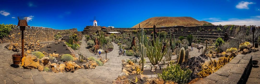 Panoramic view of the cactus garden ( Jardin de cactus) designed by Cesar Manrique, Lanzarote, Canary Islands, Spain. Picture taken 22 April 2016.