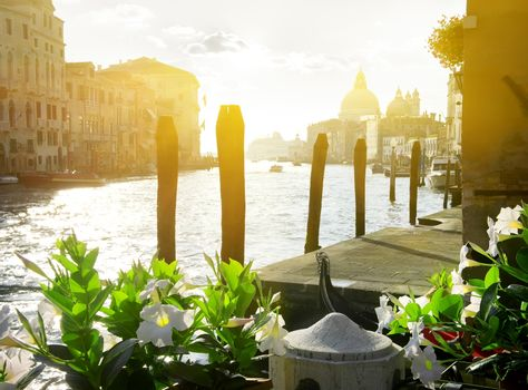 Flowers near the Grand Canal