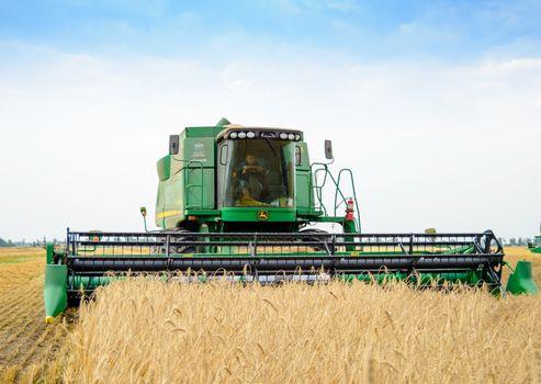 John Deere Combine Harvester Harvesting Wheat in the Field.