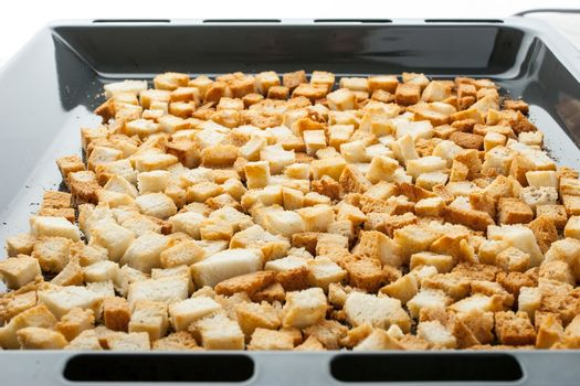 Small croutons on a baking tray