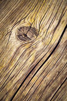 wooden board in knot