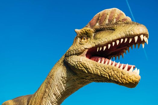 NOVI SAD, SERBIA - AUGUST 7, 2016: Dilophosaurus life size model of prehistoric animal in theme entertainment Dino Park. This was among the largest carnivores of its time.