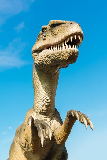 NOVI SAD, SERBIA - AUGUST 7, 2016: Velociraptor life size model of prehistoric animal in theme entertainment Dino Park. Raptor lived approximately 75 to 71 million years ago.