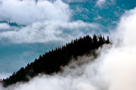 Amazing mountain landscape with dense fog. Carpathian Mountains