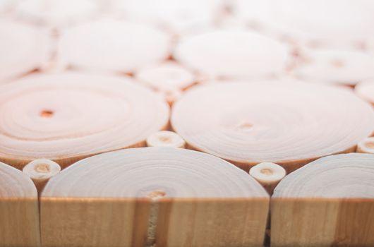Wood texture of cut tree trunk