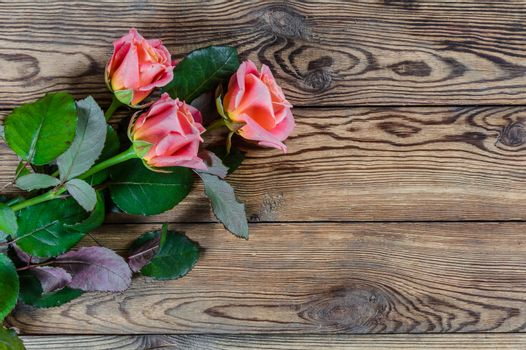 Beautiful rose flowers on wooden rustic table