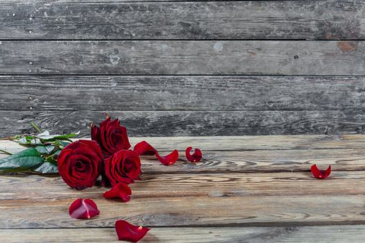 Beautiful three red rose flowers with petal on rustic table