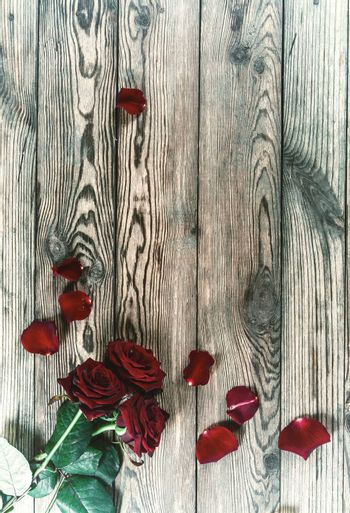 Vintage beautiful three red rose flowers with petal on rustic table