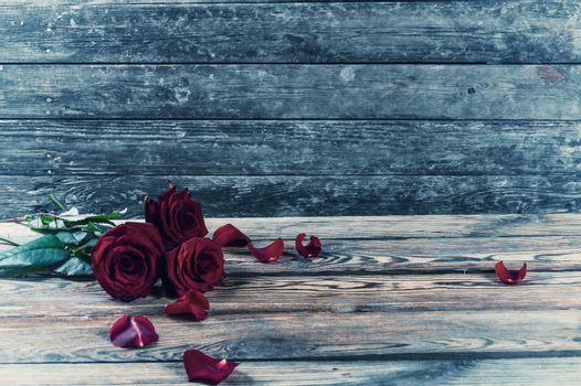 Vintagel three red rose flowers with petal on rustic table