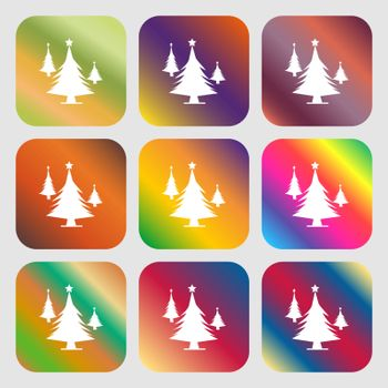 coniferous forest, tree, fir-tree sign icon