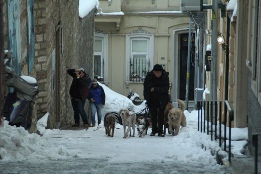TURKEY, Istanbul: A man walks his dogs as snow blankets Istanbul, Turkey for a third day on January 1, 2016, grounding 529 flights and nearly 30,000 passengers by January 4. Thousands are transferred to hotels, while others are forced to sleep at Sabia Gorken and Ataturk airports. The total cost of the storm has not yet been released.