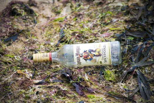 captain morgan bottle washed up on beach full of seaweed