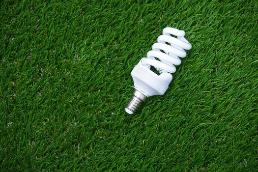 Energy saving bulb in the grass. Horizontal photo