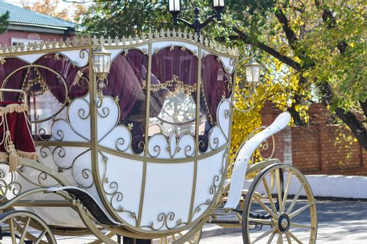 Wedding carriage to transport the bride and groom