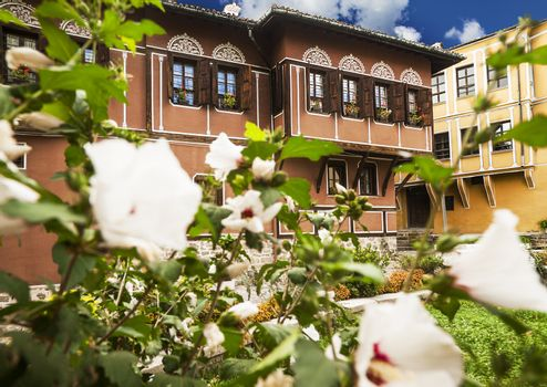View of couple old houses, cultural heritage in town Plovdiv, Bulgaria with blooming flowers foreground.