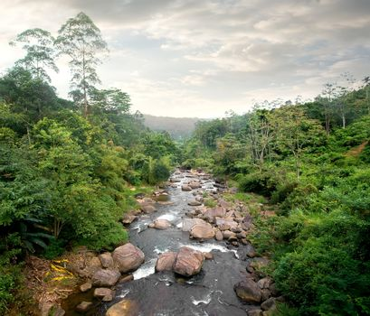 Cloudy weather and river in tropical forest