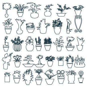 botanical set outline of Black white Herbs pots - Illustration
