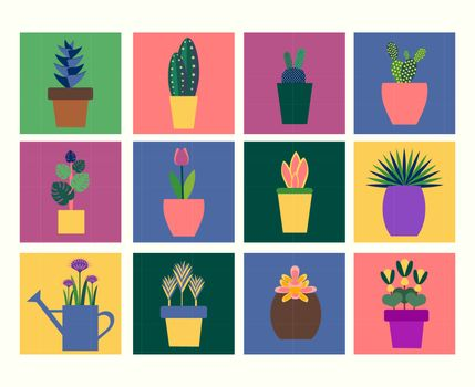 Vector collection of tropical plants in pot flat style. Green plant, flower and  botany  illustration
