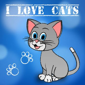Love Cats Meaning Pets Loving And Felines