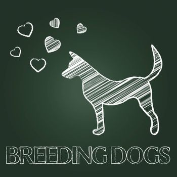 Breeding Dogs Showing Canine Bred And Doggy