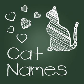 Cat Names Meaning Pets Pet And Kitty