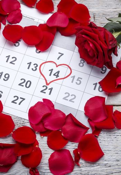 Red rose on calendar