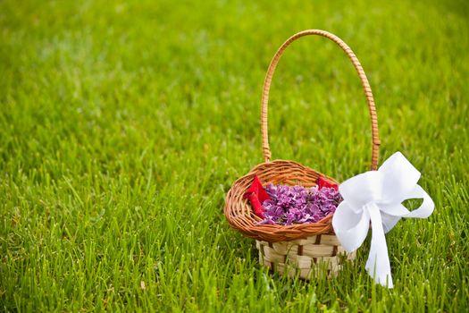 Lilac petals
