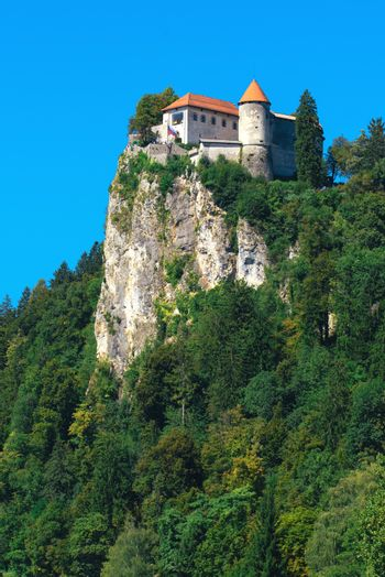 Castle on hill above lake Bled in SLovenia
