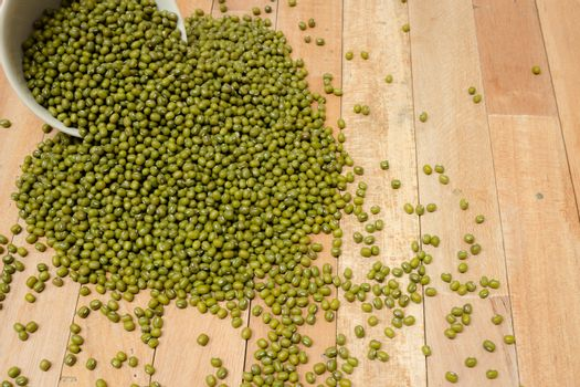 The mung bean was domesticated in Persia (Iran), where its proge