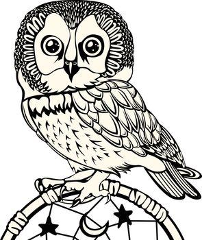 Owl with Dream Catcher