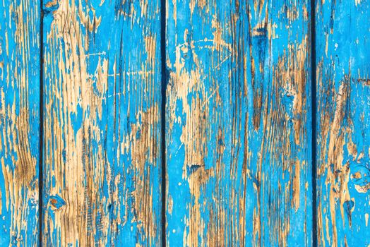 Rustic weathered planks with blue paint peeling off the surface, detailed background of wooden boards