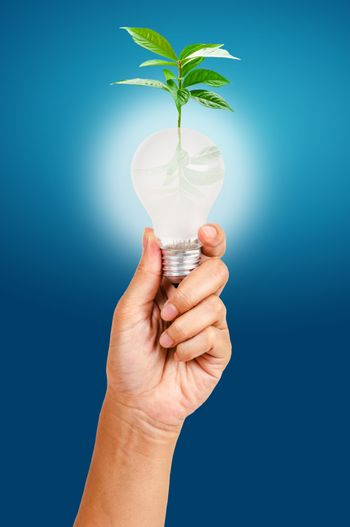 renewable energy and environmental conservation concept.