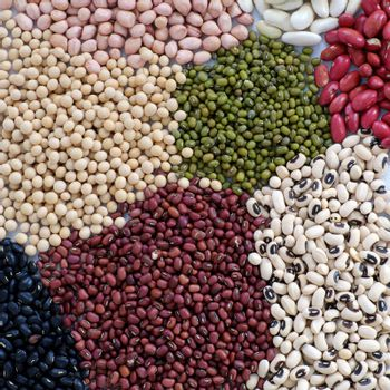 Collection of whole bean on white background, Vietnam agriculture product, fiber food make reduce cholesterol, prevent cancer, stability blood sugar, increase immune system, make heart health